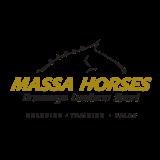 Massa Horses - Dressage Lusitano Sport